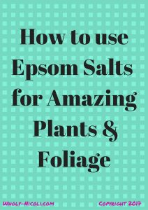green background saying How to use epsom salts for amazing plants & foliage